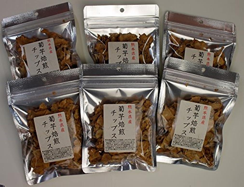排他的童謡パン屋菊芋 国産 チップス 熊本県産 30g (6)