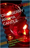 CRANBERRY AROMA CANDLE: learn how to make home maid scented candles (English Edition)