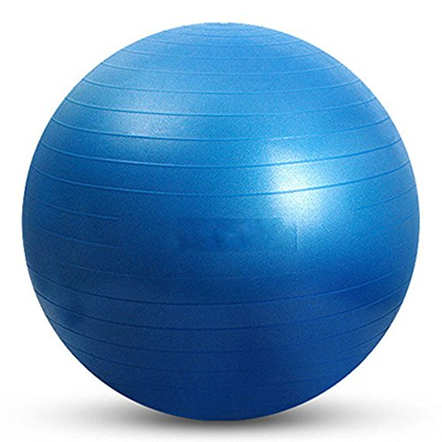 YUUWA バランスボールヨガボール45cm/55cm/65cm/75cm アンチバースト仕様ポンプ付き! ダイエット エクササイズ 全4カラー (ブルー, 75)