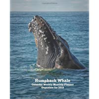 Humpback Whale Calendar Weekly Monthly Planner Organizer for 2019