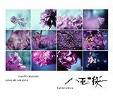 NHK大河ドラマ「八重の桜」- オリジナル・サウンドトラック コンプリート盤 (2枚組ALBUM) 画像