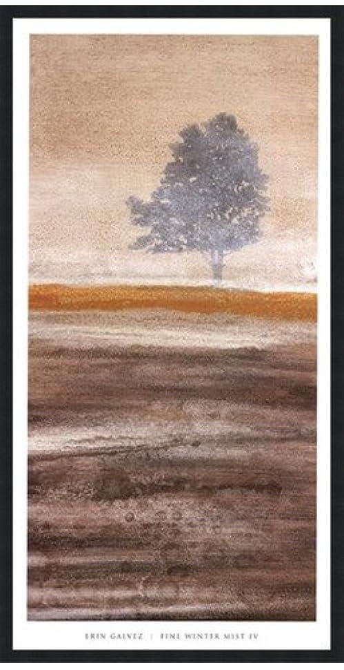 デッキスパン欠かせないFine冬ミストIV by Erin Galvez – 20 x 39インチ – アートプリントポスター LE_679832-F101-20x39