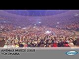 ANIMAX MUSIX 2018 YOKOHAMA