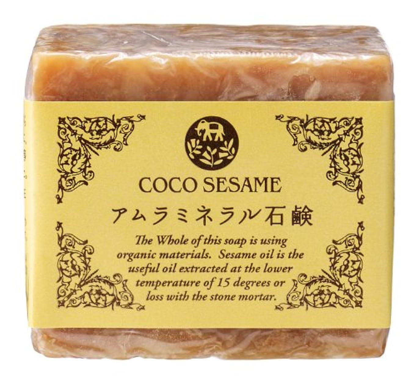 ココセサミ アムラミネラル石鹸 100g