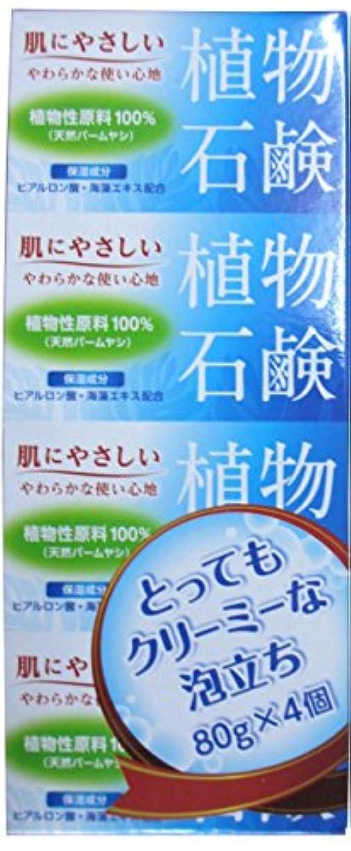 報復翻訳する読書植物石鹸 80g×4個入り 3セット