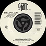 Your Imagination (A Cappella) [45 Version]