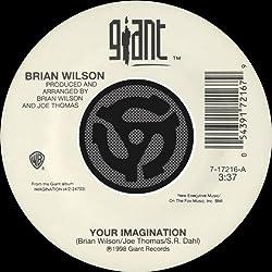 Your Imagination (A Cappella) [45 Version]