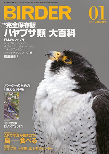 BIRDER (バーダー) 2017年 01月号 [雑誌]の詳細を見る