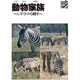 動物家族~アフリカ編~シマウマ