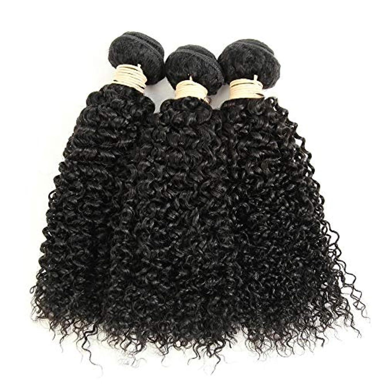 企業ドライバポルティコMayalina ブラジルのバージン変態巻き毛の束8-28インチ人毛エクステンションナチュラルカラー1バンドル、100g /個女性の合成かつらレースかつらロールプレイングかつら (色 : 黒, サイズ : 10 inch)