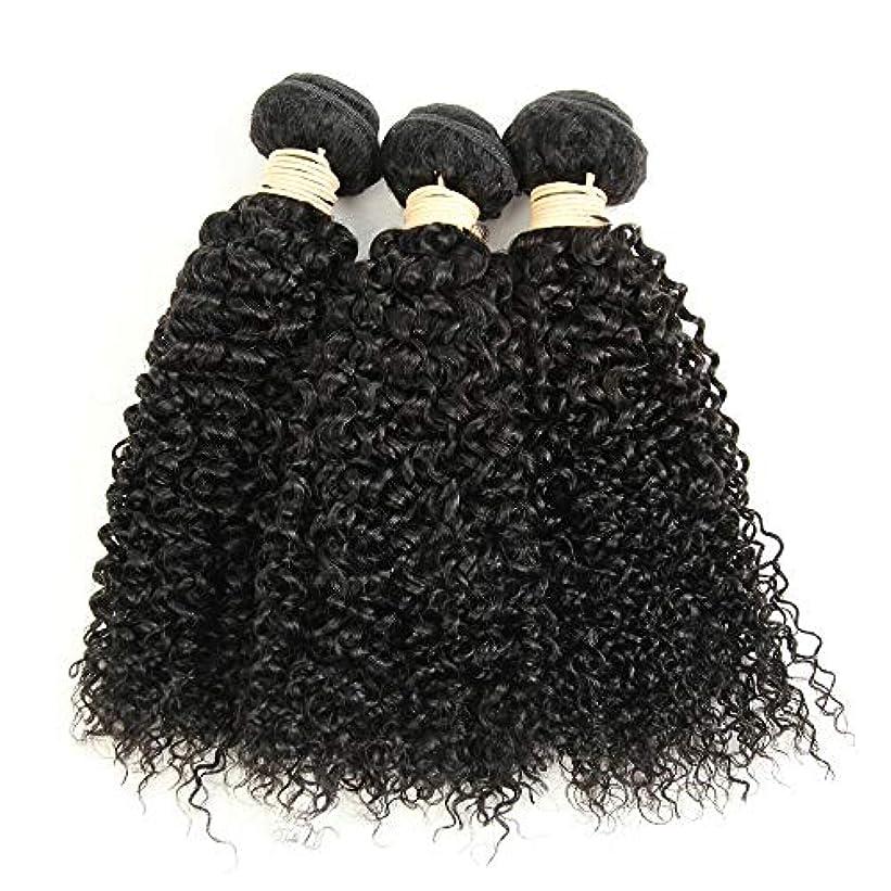 保守的わな線Mayalina ブラジルのバージン変態巻き毛の束8-28インチ人毛エクステンションナチュラルカラー1バンドル、100g /個女性の合成かつらレースかつらロールプレイングかつら (色 : 黒, サイズ : 10 inch)