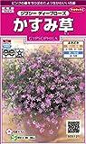 サカタのタネ 実咲花5121 かすみ草 ジプシー ディープローズ 00905121