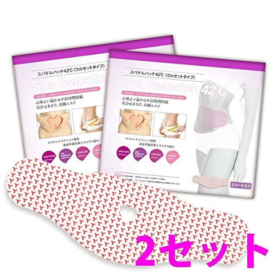 化粧変更可能スリチンモイスパゲルパッチ42℃ (コルセットタイプ) 2セット