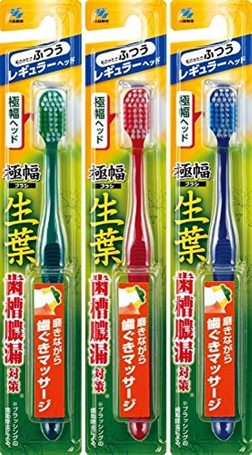 葉っぱ上流のファックス【まとめ買い】生葉(しょうよう)極幅ブラシ 歯ブラシ レギュラーヘッド ふつう×3個