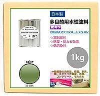 屋外用 多目的用 水性塗料 35-50H 抹茶グリーン 1kg/艶あり 内装 外装 壁 屋内 ファインコートシリコン つやあり 多用途