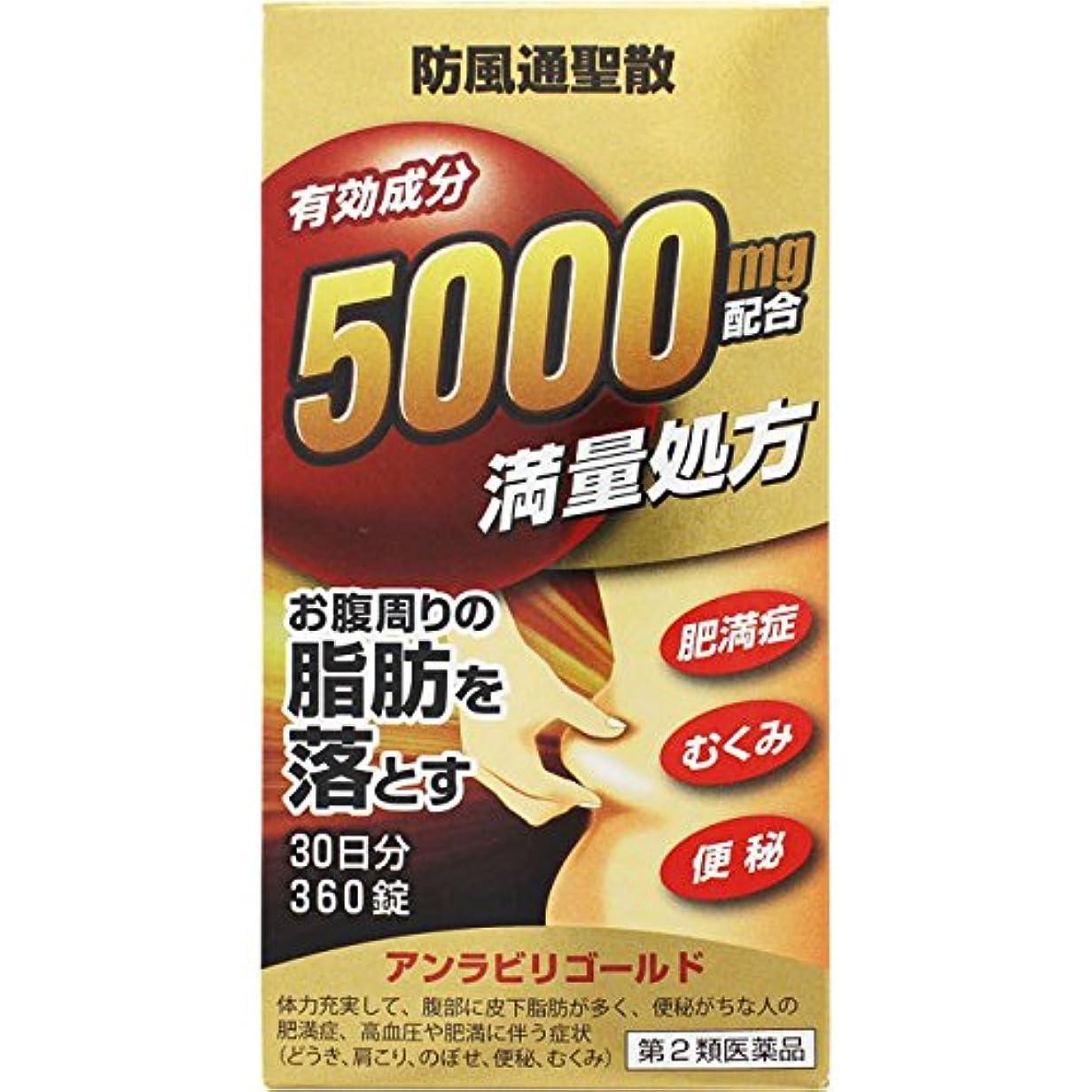 天井信条緑【第2類医薬品】アンラビリゴールド 360錠 ×2
