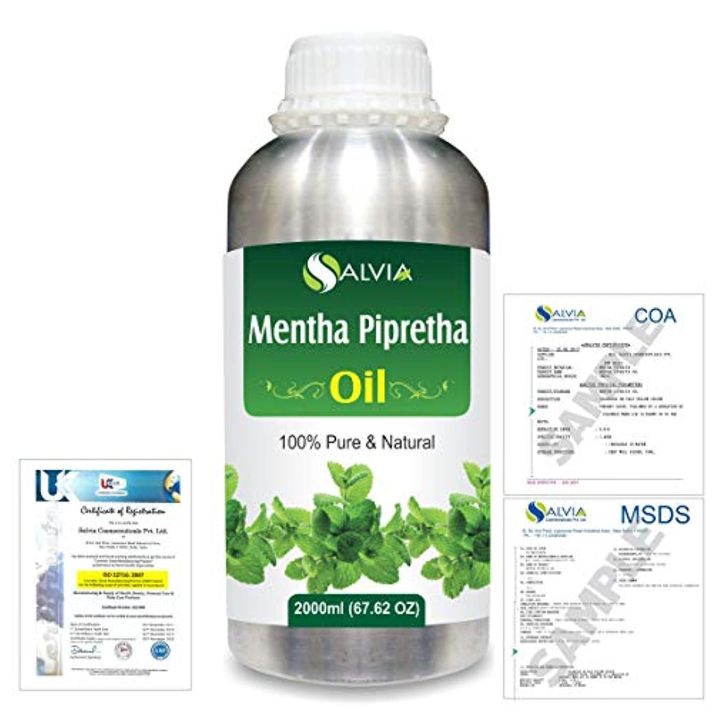同性愛者掃く磁器Mentha Pipreta 100% Natural Pure Essential Oil 2000ml/67 fl.oz.