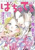 ぱちゅてる vol.2 [雑誌]