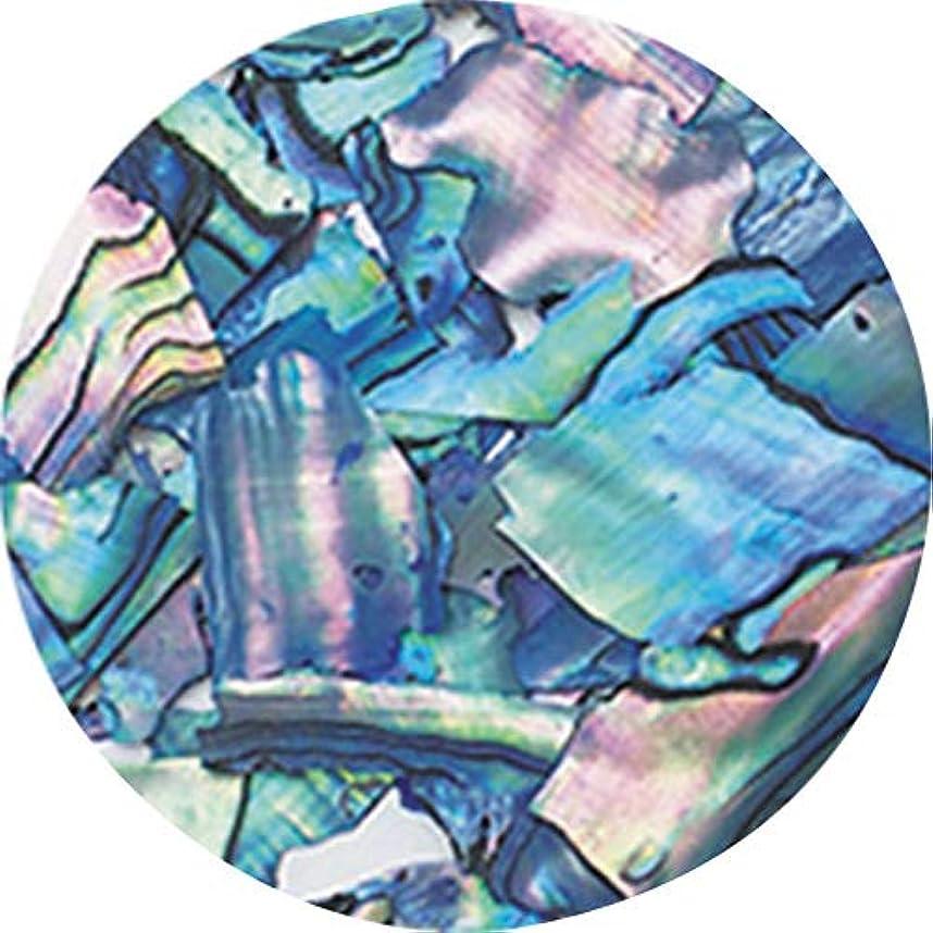超音速太平洋諸島領事館ageha ナチュラルビーチシェル ブルーマーブル 【アート?ネイル用品】