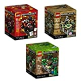 Minecraft Lego Collectible 3 Piece Set - (The Original) Minecraft 21102, the Village 21105, the Nether 21106. (Recommended Age 10-15 Yrs) おもちゃ [並行輸入品]
