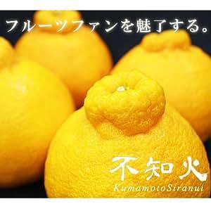 【産地直送】熊本県産 不知火柑(デコポンと同品種) 5kg(15~20玉))