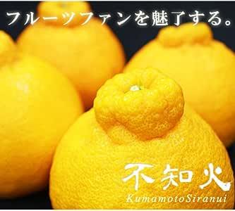 【産地直送】熊本県産 不知火柑(デコポンと同品種) 箱込 約5kg(15~22玉))