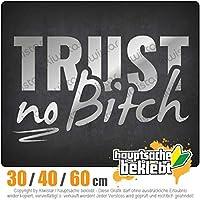 KIWISTAR - Trust no Bitch - Trust no Tussi 15色 - ネオン+クロム! ステッカービニールオートバイ