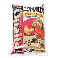 クオリス ニワトリのエサ 1kg 鳥 フード 餌 えさ 種 穀類 4袋入り