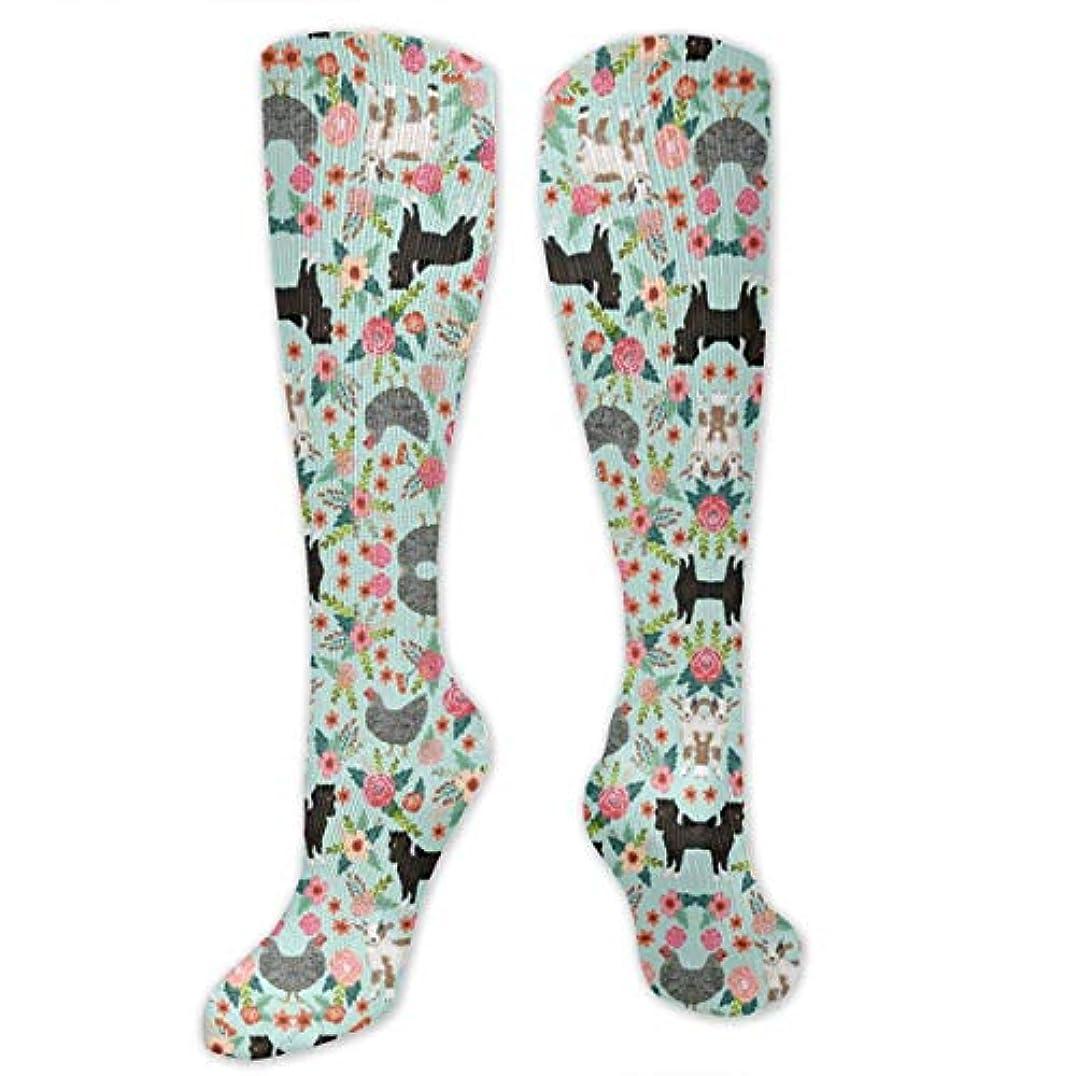サリー開始保守的靴下,ストッキング,野生のジョーカー,実際,秋の本質,冬必須,サマーウェア&RBXAA Goat Pony and Chicken Socks Women's Winter Cotton Long Tube Socks...