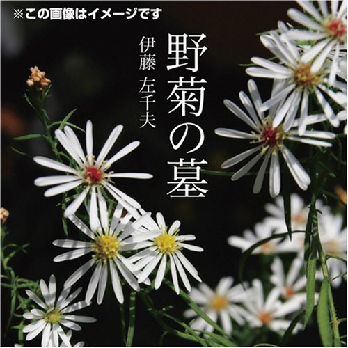 [オーディオブックCD] 野菊の墓 (<CD>)