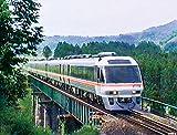よみがえる20世紀の列車たち7 JR東海Ⅱ ジョイフルトレイン<気動車篇> [DVD]