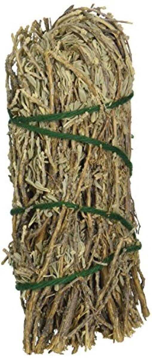 ブラシぼかす天のセージ& Sweetgrass – Medium Smudge Wand byセージSpirit、(hrb28 )