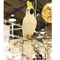 プエブコ PUEBCO バードオフジェ ARTIFICIAL BIRDS オウム Parrot Sサイズ 正面向き 101071