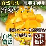 【2019年1月4日より順次発送予定】[クール冷凍出荷] 冷凍マンゴー 2kg(200g×10袋)(沖縄県 沖縄マンゴー生産研究会) 自然農法