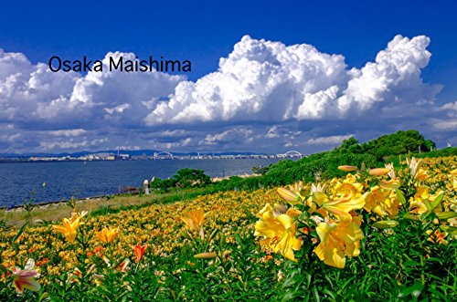 Osaka Maishima (Spanish Edition)