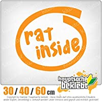 Rat inside - 3つのサイズで利用できます 15色 - ネオン+クロム! ステッカービニールオートバイ