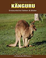 Kaenguru: Erstaunliche Fakten & Bilder