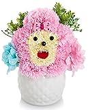 ソープフラワー 創意ジュエリーギフトボックス 誕生日 母の日 記念日 先生の日 バレンタインデー 昇進 転居など最適としてのプレゼント (ピンク-1)