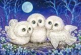1000ピース ジグソーパズル 森のささやき ~Owl Triplets~