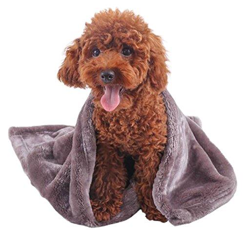 ふく福 暖かい ペット 犬 猫 フリース ブランケット毛布 体拭き タオル ふわふわ ベッドマット秋冬の防寒 クーラー用 (1個,色ランダム) (M)