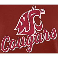 Fanatics Branded Washington State Cougars Women's Crimson Plus Sizes Slant Script Pullover Hoodie スポーツ用品 Plus_3X 【並行輸入品】