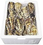 坂越牡蠣 殻付牡蠣 3kg