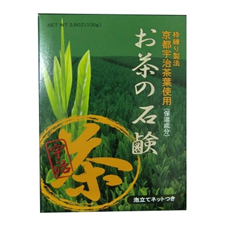 間違い実装するダブルお茶の石鹸 ハーバルグリーンソープ 100g