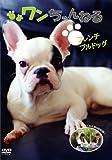 ワンちゃんねる フレンチブルドッグ [DVD]