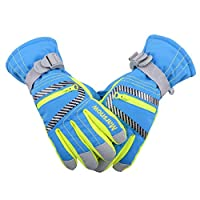 TRIWONDER グローブ 手袋 スキーグローブ 防水 防寒 スキー手袋 メンズ レディース キッズ アウトドア 冬用 スノー スノボー 登山 滑り止め付き 雪用手袋 (青, L (レディース))