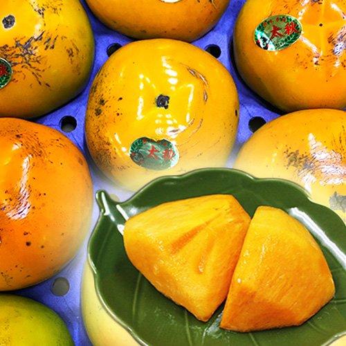 【 九州産 】 太秋柿 高級品種 訳あり ご家庭用 (箱込 約3kg(8〜14玉))