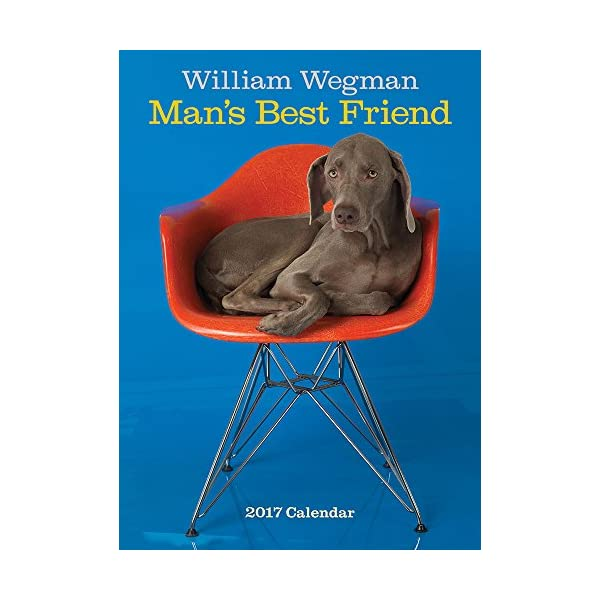 William Wegman Mans Best...の商品画像