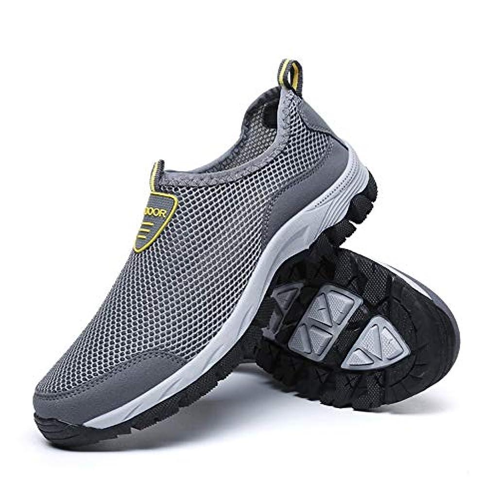 海里不確実発言するHYH (グレー)ウォーターシューズ特別大きいメッシュの靴の男性とヨーロッパの大きいサイズのスポーツシューズメンズシューズ通気性の大きいサイズのスポーツシューズ男性 いい人生 (色 : Gray, Size : US6.5)