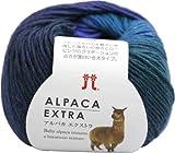 ハマナカ アルパカエクストラ 毛糸 合太 Col.10 ブルー 系 25g 約96m 5玉セット 2164