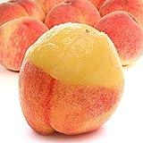 もも 福島の桃 約1.5kg (6?7玉)福島産 市場直送 8中旬出荷予定